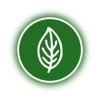 Pflanzenstärkung