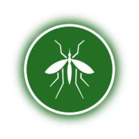 Mücken und Fliegen