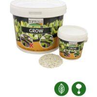Topbuxus Grow