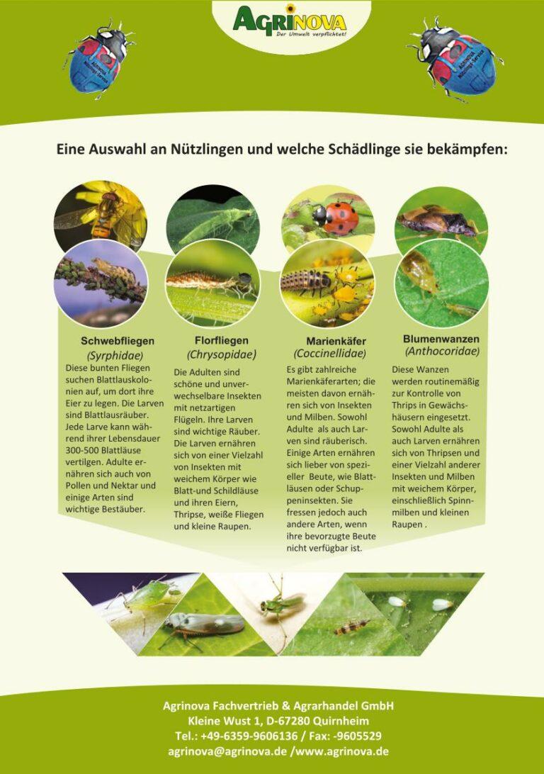 Nutzinsekten im Obst- und Gemüse- und Gartenbau