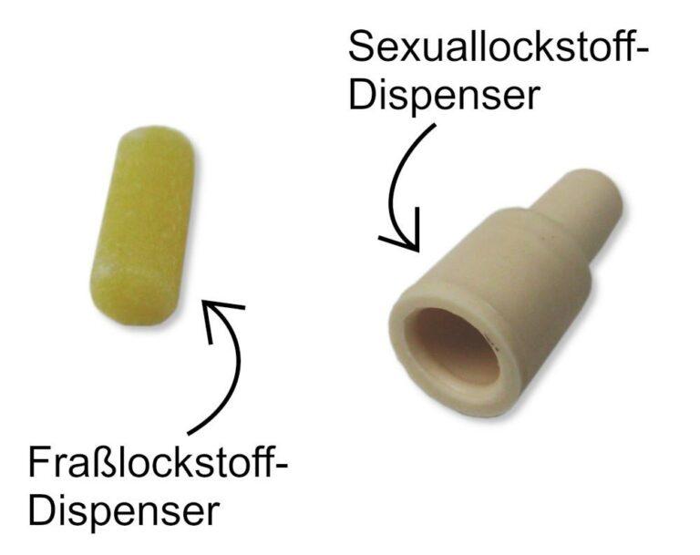 BIOLOCK Klebefalle - Sexuallockstoff- und Fraßlockstoff-Dispenser